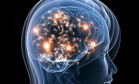 Image result for stress hormones