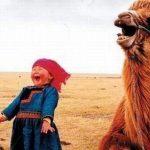 life-laughing-BG-crop