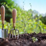 Six Surprising Benefits Of Gardening